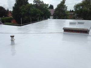 Commercial Tor Roof